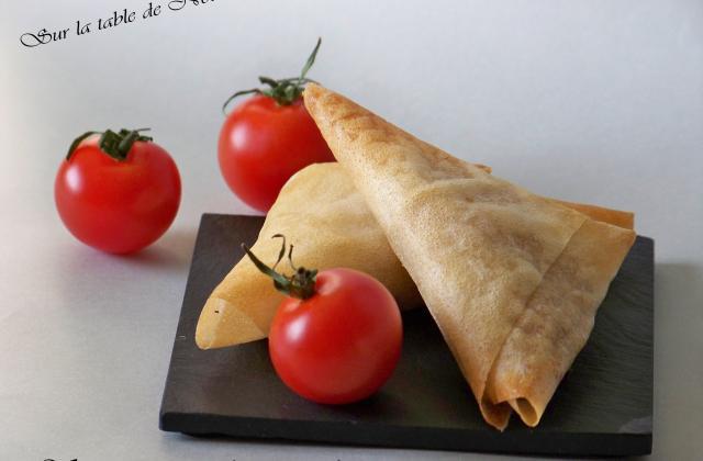 Samossas au thon et à la tomate - Photo par Nounoune25