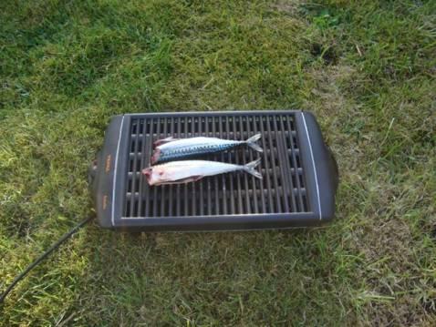Recette maquereau au grill 750g - Recette maquereau grille barbecue ...