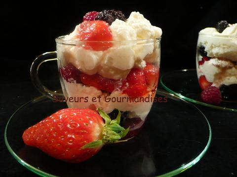 recette mousse de mascarpone aux fruits rouges facile 750g. Black Bedroom Furniture Sets. Home Design Ideas