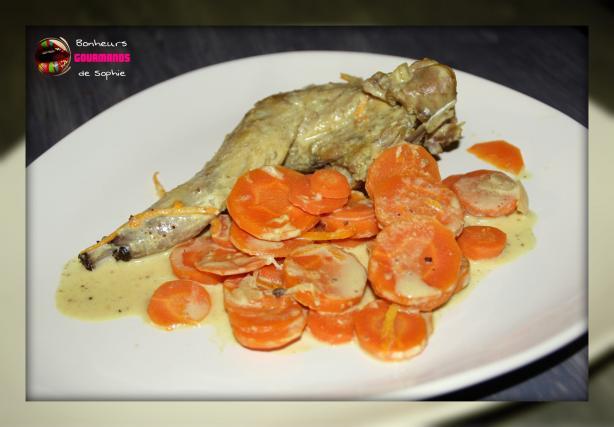 Recette curry de lapin aux carottes et l 39 orange facile 750g - Recette de lapin facile ...